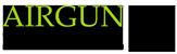 Airgun Service
